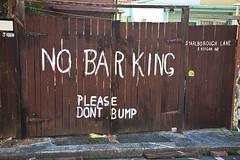 Stop Barking Dog | Ambassadors for Dogs
