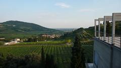 #ksavienna - Villa Girasole (85) (evan.chakroff) Tags: evan italy 1936 italia verona 2009 girasole angeloinvernizzi invernizzi evanchakroff villagirasole chakroff ksavienna evandagan