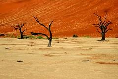 Africa - Namibia / Sossusvlei /   (RURO photography) Tags: voyage africa travel blue orange color tourism nature sunrise landscape fun photography colours desert photos african vivid reis paisaje tourist paisagem colores ciel afrika lonelyplanet nuage paysage der landschaft namibia paesaggio sanddunes park na