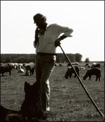 The Shepherd No.32 (Dushan B. Hadnadjev [slowly back]) Tags: life people man sheep time shepherd soul srbija dushan