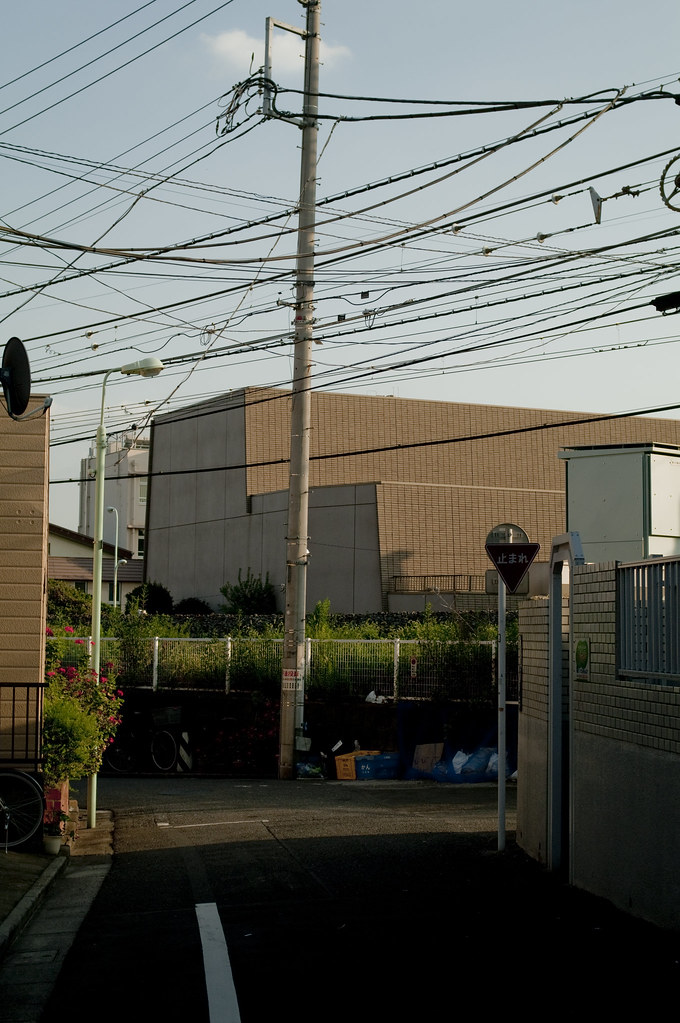 street of tokyo1259