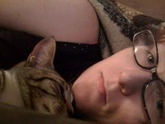 My kitteh