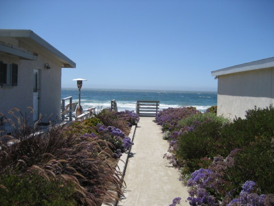 coast2 016 (550 x 413)
