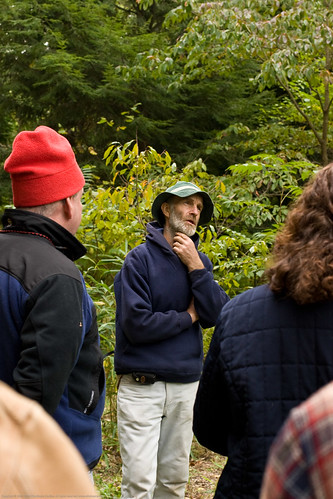 Edible Forest Gardens: talking about trees