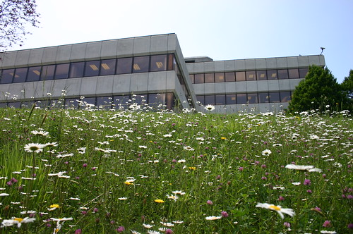 Photo of a building in the Mondragon cooperative. It is an office building surrounded by grass and wildflowers.