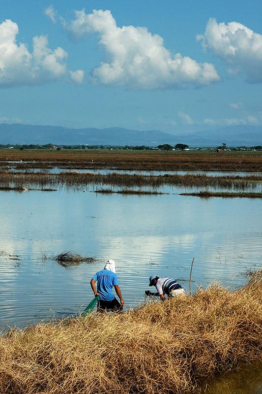 Candaba Fisherfolks