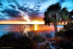 Setting Sun (ShacklefordPhotoArt) Tags: sunset sky clouds florida merrittisland newvision colorphotoaward artistoftheyearlevel3 artistoftheyearlevel4 artistoftheyearlevel5 artistoftheyearlevel7 artistoftheyearlevel6 peregrino27newvision