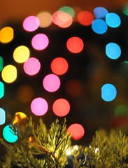 Evergreen, Christmas Lights, and, oh yes, some Bokeh (John Petrick) Tags: holiday nikon bokeh 50mm14 christmaslights thelakes d90 christmascolors nikkor50mm14 hbw holidaytime evergreenbush christmasbokeh nikond90 89117 concordians december2009 22daysbeforechristmas thelakeslasvegas lasvegasindecember jackseasytoshopfor mywifenotthateasy stillneedtogetthattreeuptoo isweareachyeariwantthisdonebyoctober whatdidieverdobeforeamazon bokehedchristmas