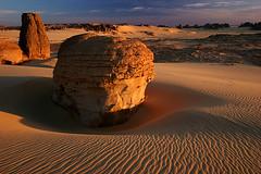 Rising from the Sand (hapulcu) Tags: sahara algeria algerie argelia dz tamanrasset riceworld tassiliduhoggar tahaggar