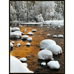 Yosemite Gold (Tony Immoos) Tags: california lighting morning trees winter white snow reflection nature water river landscape gold golden nationalpark glow scenic merced olympus explore valley yosemite ripples yosemitenationalpark e3 sierranevada frontpage daytrip valleyview yosemitevalley 1000views mercedriver yosemiteblog californialandscape mariposacounty zd yosemiteblogcom 1260mm olympuse3