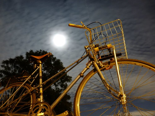 Moonlight & Mixte