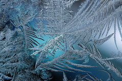 Crazy Frost Formations! (haley lorenson) Tags: blue macro ice beautiful weather closeup frozen frost sharp crisp icicles harshweather