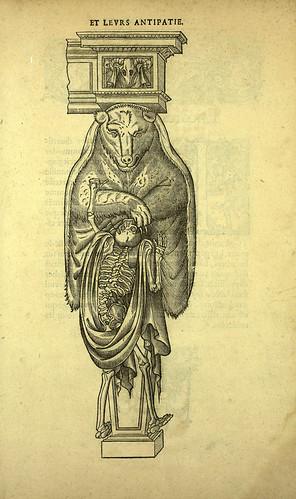 009-oso-Joseph Boillot 1592