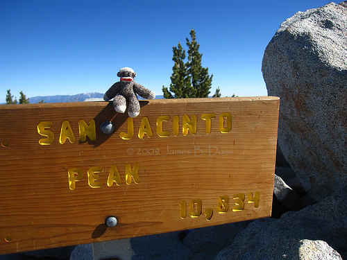 Sock Monkey Summits!