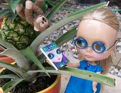 Lilly tries to coax Mr. Monkey out of the Pineapple tree with the newest issue of Blythe Bliss
