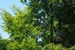 IMGP3360 (strongwater) Tags: dave jan bo velbert klettern witte klimmen svenja ilka luza strongwater waldkletterpark