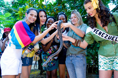 Miss Universe 2009 contestants view a Bahamian Boa
