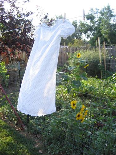 Sunflowers & Fresh Laundry