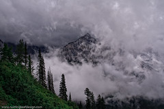 """Building Storm; Going-to-the-Sun Road @ Glacier National Park (Scott Stringham """"Rustling Leaf Design"""") Tags: trees sun white storm cold green rain weather forest photography photo nationalpark montana graphic walk glacier photograph glaciernationalpark nationalparks goingtothesun goingtothesunroad"""