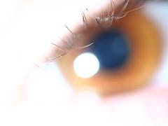 Ai Liek My Eyez [+1] (Maicdlphin) Tags: eye grandcanyon flash lash beady