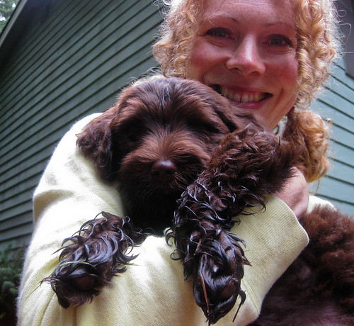 Fay & a damp Ewok