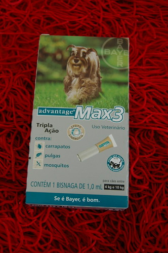 Anti-pulgas Bayer brinde