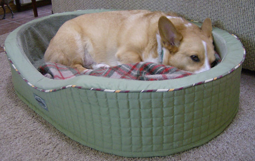 Blazer's bed