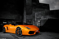 LP560-4 Spyder (Denniske) Tags: november orange photography spider nikon shoot photoshoot angle belgium belgique belgie wide sigma convertible automotive 11 spyder 09 lp shooting mm dennis 1020 7th lamborghini 2009 ara