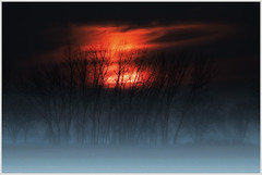 November Dawn (glness) Tags: morning trees red minnesota rural sunrise dawn singleexposure canonef100400mmf4556lis canon7d gregness