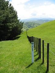 New Zealand 163 (sandwes) Tags: newzealand northisland mountainbiking hawkesbay