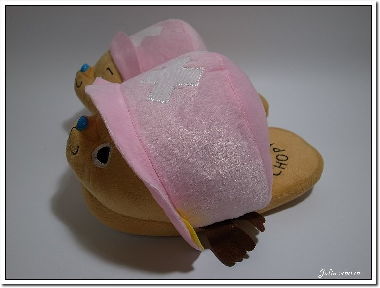2010~新年禮物 (8)