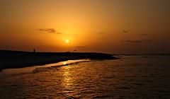 Song of The Wave (-Reji) Tags: ocean morning light love beach sunshine night dawn nikon truth waves singing song slumber tide wave drop beam shore strong always sweetheart awake caress daybreak withdraw lovley d90 weakend sighing rejik sleepnessness belovved