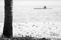 """Sail away"" (Colin Lim) Tags: blackwhite singapore sailing sail changi changivillage changibeach colinlim"