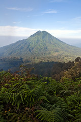 (FRAZCAM) Tags: morning light mountain forest indonesia se volcano java nikon asia south east ferns gunung 2011 18200mm ijen d300s