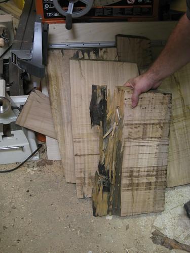 messy Eucalyptus slab front