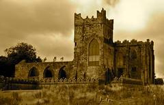Tintern Abbey (Wayne.Brown) Tags: abbey hook cistercian wexford tinternabbey tintern cowexford nikond80 hookpeninsula