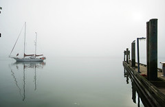 Foggy Steveston 3948e (Harris Hui (in search of light)) Tags: canada fog vancouver boats moody bc yacht richmond amateur steveston fishermenswharf foggyday nohorizon colorwithoutcolor harrishui vancouverslrshooter vancouverdslrshooter