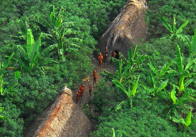 فقدت قبيلة في الأمازون
