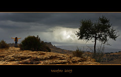 (tozofoto) Tags: light shadow sky italy tree travelling rain clouds canon landscape italia colours kate sicily kati agrigento naturesfinest mywinners szicilia tozofoto saariysqualitypictures superstarthebest travelsofhomerodyssey valleyofthetempels