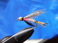 Peter Ross (Dr hoddsson) Tags: fly flyfishing fishingfly
