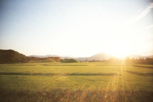 Gyeongju field