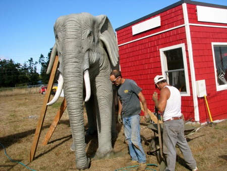 Elephant installation in Greenbank