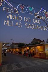 Feira do Vinho do Dão 2009