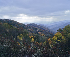 Stormy day (papazee) Tags: trees sky mountain storm mountains green fall leaves clouds mediumformat landscape landscapes nationalpark scenery tennessee fallcolors storms naturallandscape pentax6x7 landscapephotography greatsmokeymountainsnationalpark mountainvalley
