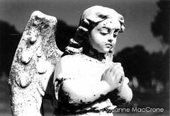 Peaceful Prayer ~ Original Black & White Photograph (Suzanne MacCrone Rogers ~ Italian Girl in Georgia) Tags: white black girl cemetery angel garden georgia wings italian prayer 911 peaceful photograph serene etsy statuary