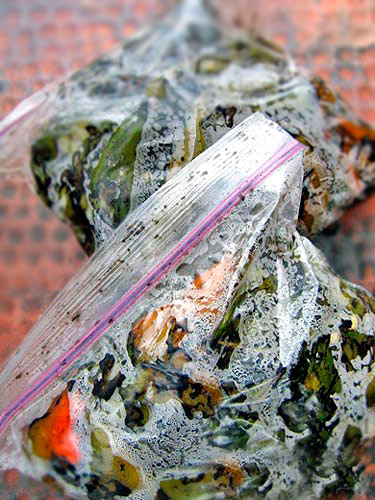 Bags of Roasted Hatch Green Chiles recipe