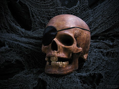 It Be Pirate Day (jciv) Tags: desktop wallpaper halloween skeleton skull decoration haunted creepy spooky pirate pirateday file:name=img9318