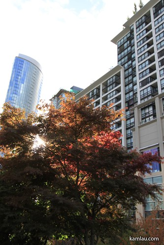 Downtown Vancouver in Fall by you.