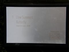 2007-12-23-Stoneleigh-2007-01-01-Butterfly (russellstreet) Tags: newzealand sculpture butterfly auckland nzl manukau aucklandbotanicalgardens llewsummers sculpturesinthegarden2007 stoneleighsculpturesinthegarden2007