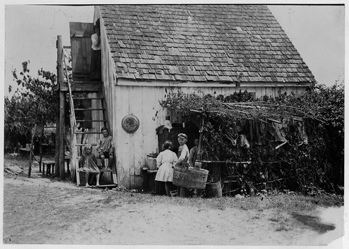 Three Families in a Shack in Maryland